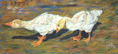 Paintings of animals, birds. Domestic Fowl. Wild Fowl